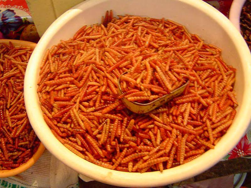 fransk matkultur wikipedia