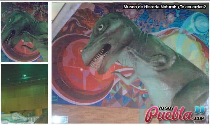 puebla-museo-historia-natural-tiranosaurio
